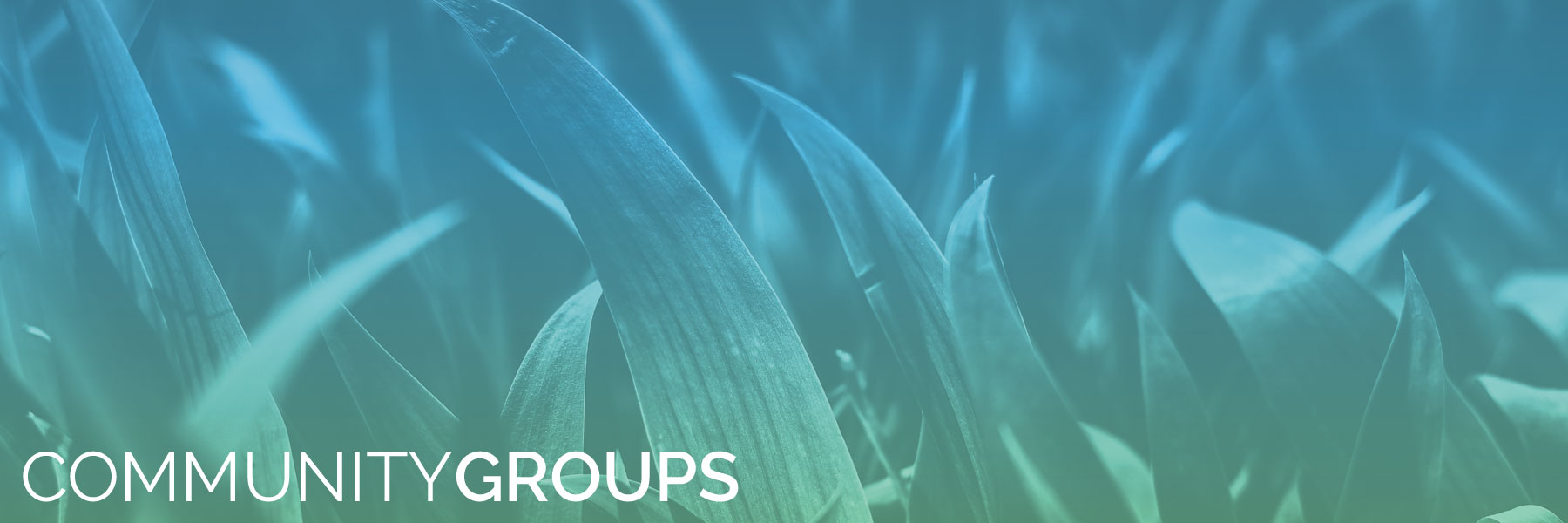 Community-Groups-1800x600