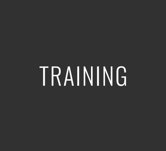 Training-313131